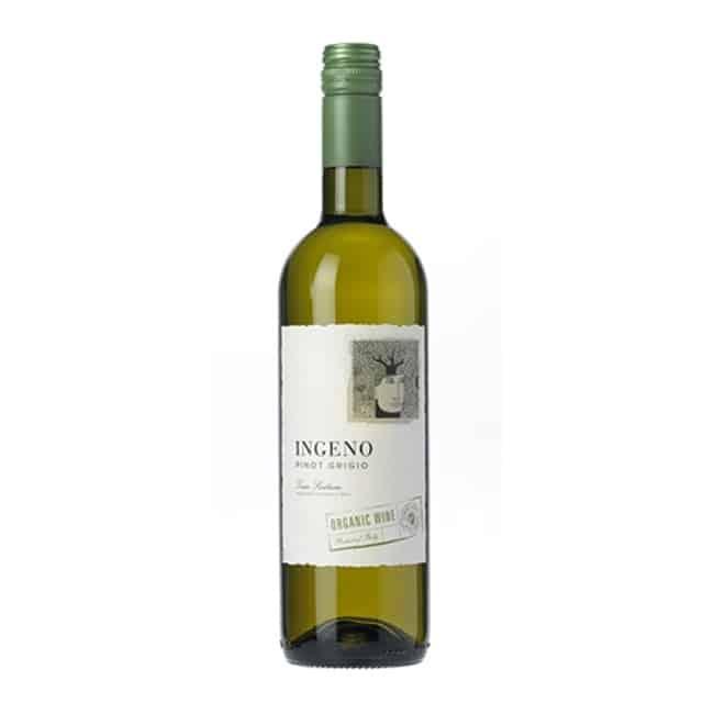 ingeno pinot grigio organic wine
